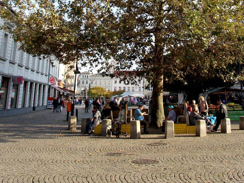 Baum auf dem Markt in der Altstadt Spandau